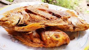 Mojarra frita al estilo de Veracruz