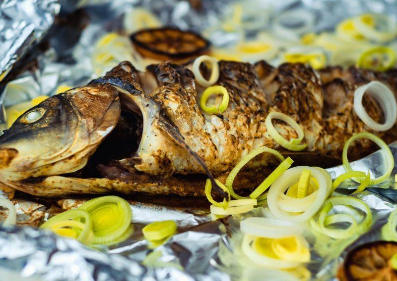 pez carpa