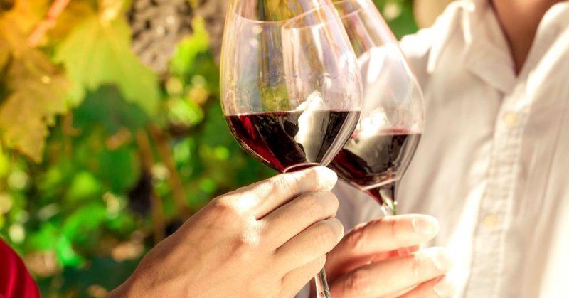 Qué es catar un vino y cómo se hace